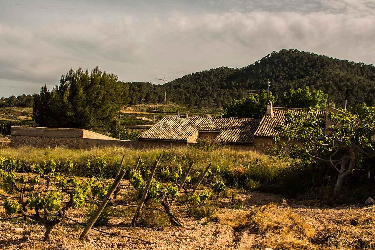 casa mediterránea inland entre viñedos