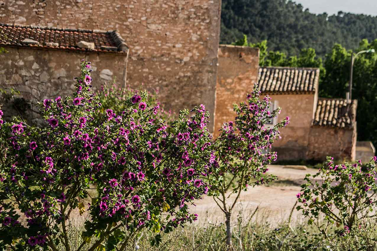 casa mediterránea inland monovar